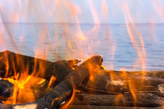 Fire of wood. On the coast of the sea Royalty Free Stock Images
