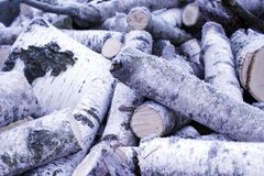 Fire wood covered by hoar-frost Royalty Free Stock Photography