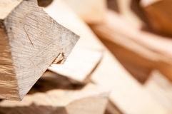 Fire wood detail Stock Image
