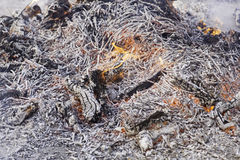 Fire wood embers Royalty Free Stock Photo