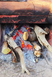 Fire wood for the fire to warm. Royalty Free Stock Photo