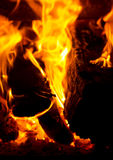 Fire. And wood in the place Royalty Free Stock Photo