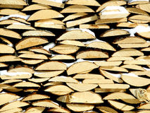 Fire wood. The firewood put in a woodpile Stock Photo