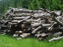 Fire wood heap Stock Images