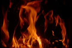 Fire of wood. In the interior fireplace royalty free stock photography