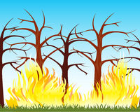 Fire in wood. The Natural disaster fire in wood.Vector illustration Stock Images
