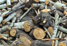Fire wood old axe Royalty Free Stock Photo