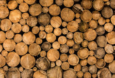 Fire wood. Pile of chopped fire wood Royalty Free Stock Photos