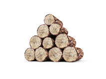 Fire wood rendered isolated on white Royalty Free Stock Photo