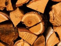 Fire wood, tree  oak Royalty Free Stock Photos