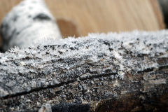 Fire wood under hoar-frost Royalty Free Stock Photos