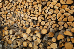 Fire woods Stock Photography