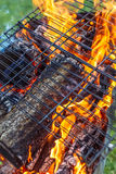 Fire woods and hot coal in a grill.  royalty free stock photos