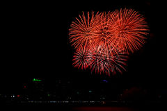 Fire work. Celebration fireworks on black sky background Royalty Free Stock Photos