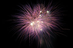 Fire work for celebrate season Royalty Free Stock Images