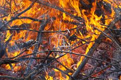fire01 Royaltyfria Foton
