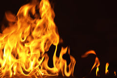 Fire16.jpg. Fire thongs Stock Images