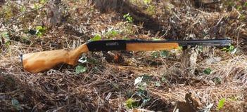 Firearm Royalty Free Stock Image