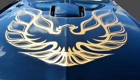 Firebird on car hood Royalty Free Stock Photo