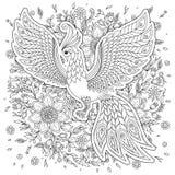Firebird per l'anti pagina di coloritura di sforzo con gli alti dettagli Fotografia Stock