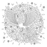 Firebird per l'anti pagina di coloritura di sforzo con gli alti dettagli Fotografie Stock Libere da Diritti