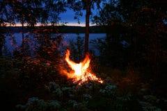 Firebird shape bonfire Royalty Free Stock Photography