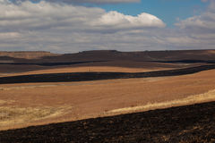 Firebreaks Dry Mountain Landscape. The burned grass for firebreaks give a stunning contrast against the hills and dry grass on the landscape during a dry African Stock Image