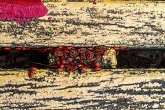 Firebugs på bänk Royaltyfri Bild