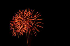 firecracker Stock Fotografie