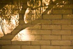 Fired Adobe Wall Royalty Free Stock Photography
