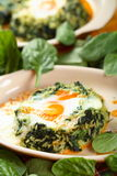 Fired egg with spinach Stock Photos