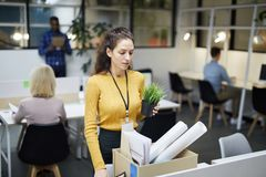 Fired employee. Fired employee: sad young women with curly hair packing office stuff while leaving office, she putting potted plant into box royalty free stock image