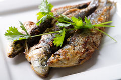 Fired fish Stock Image