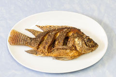 Fired fish. Health  kitchen  lunch plate fish Royalty Free Stock Photography