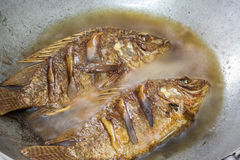 Fired fish. Health  kitchen  lunch plate fish Royalty Free Stock Photo