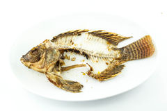 Fired fish. Health  kitchen  lunch plate fish Stock Photography
