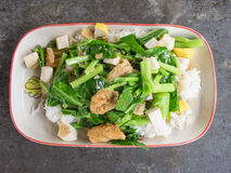 Fired kale with tofu. Thai vegetarian food Royalty Free Stock Image