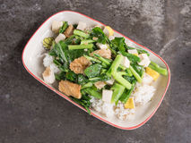 Fired kale with tofu. Thai vegetarian food Stock Photos