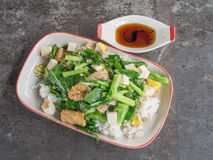Fired kale with tofu. Thai vegetarian food Royalty Free Stock Photography