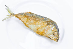 Fired mackerel Stock Images