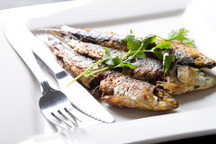 Fired pilchard Royalty Free Stock Images