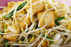 Fired tofu with bean sprout Royalty Free Stock Images