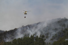Firefight helicopter dropping water over fire on a forest Stock Image