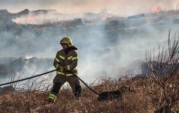 firefighter fotos de stock