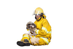 Firefighter, fireman rescued the pets from the fire. Isolated on white Royalty Free Stock Photos
