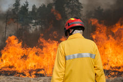 Firefighter looking on forest fire. BOYARKA, UKRAINE - 27 MART 2015: Firefighter or firemen on agriculture land fire. It was demonstration training of forest Royalty Free Stock Images