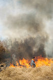Firefighter try to suppress fire. BOYARKA, UKRAINE - 26 MART 2015: Firefighter or firemen on agriculture land fire. It was demonstration training of forest fire Stock Photos