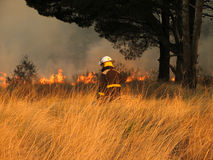 Firefighter Walking To The Fire Royalty Free Stock Image