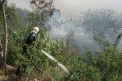 firefighters Foto de Stock Royalty Free