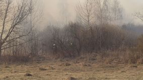 Firefighters extinguish dry grass and burning forest during a fire, spring, fire danger. Landscape stock video